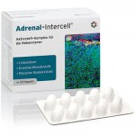 Adrenal-Intercell - 120 kapsułek